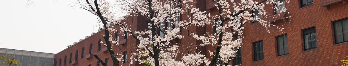 近畿大学・医学部対対策コース